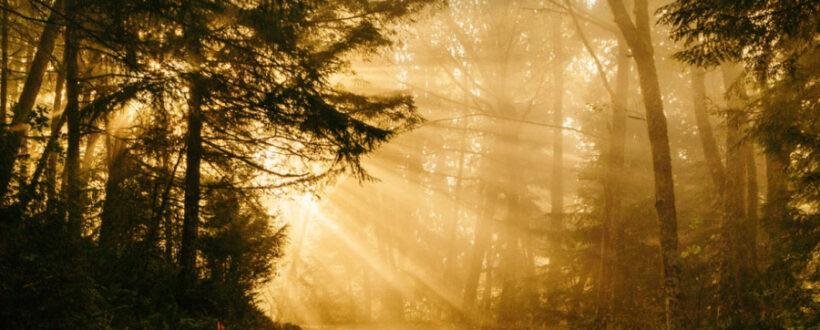 path to healing, healing path, energy recovery, vitality, create energy,