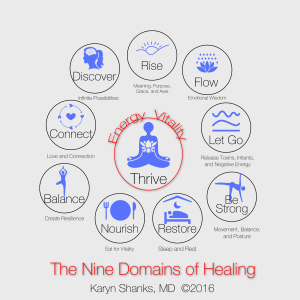 the nine domains of healing, karyn shanks md, liftoff, the nine domains of energy recovery, functional medicine, holistic medicine