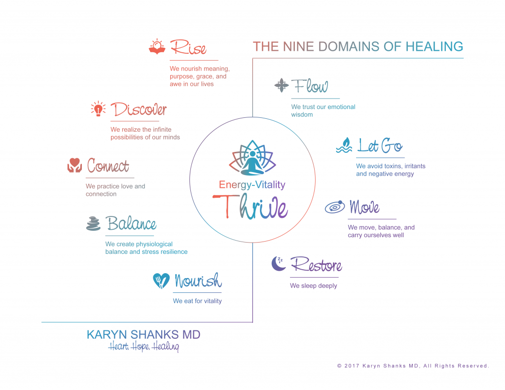 The Nine Domains of Healing, Karyn Shanks MD, Liftoff, Functional Medicine, body-mind healing, mind-body healing, self-care, transformation, self-empowerment, energy recovery,